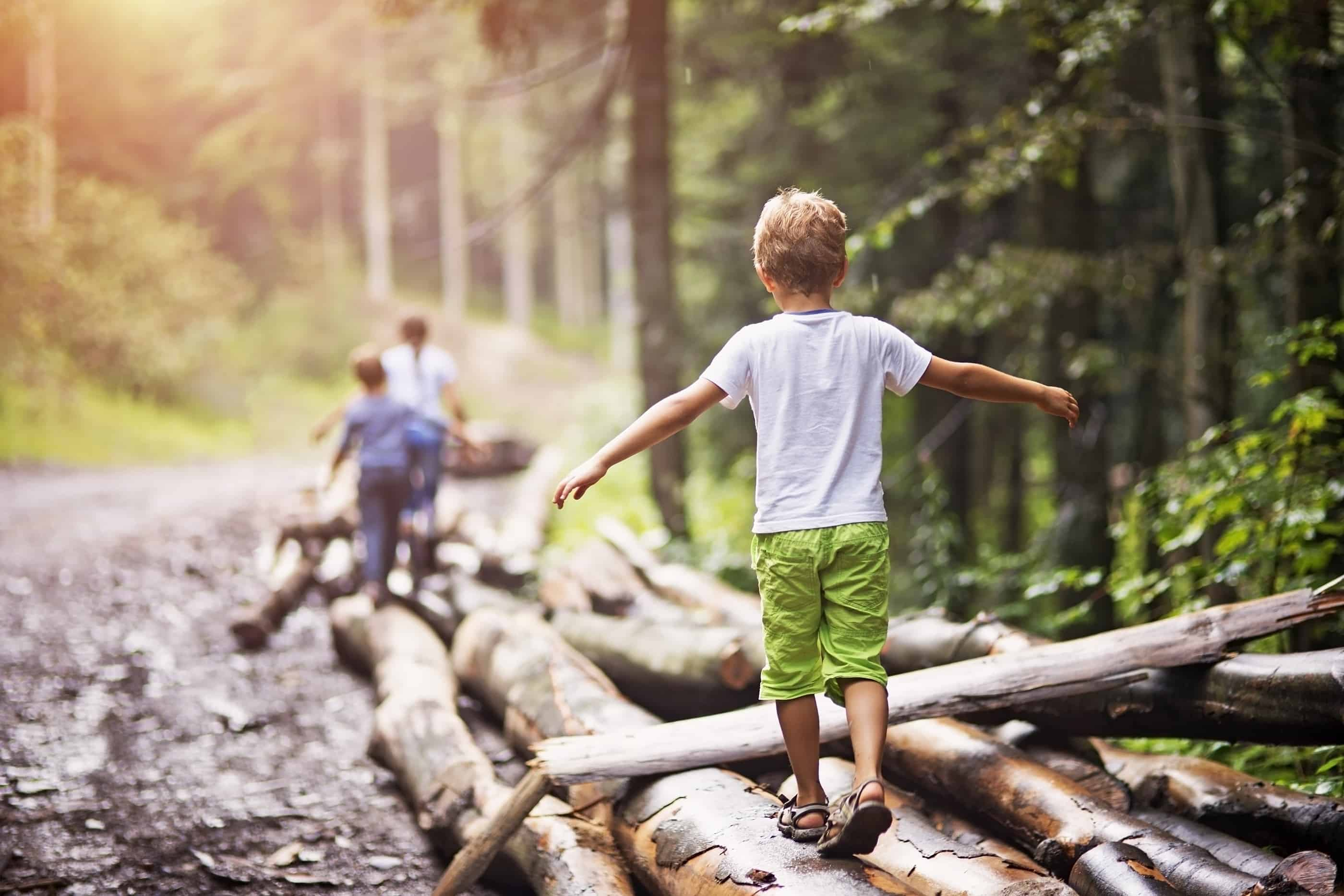 Little hikers walking on a tree trunks in a forest.